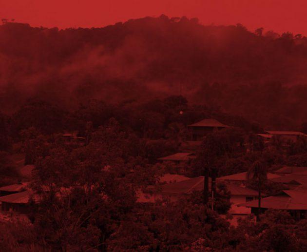Guyane les jardins de l'exil
